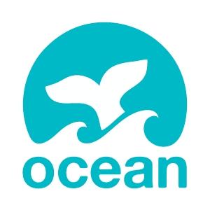 Ocean, agência de marketing digital de Thiago Melo, Vicente Tardin e Viviane Danin